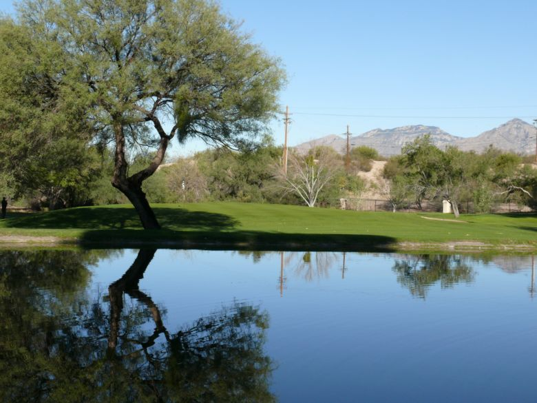 Forty Niners Country Club Tucson AZ