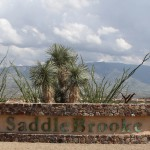 Tucson MLS Listings SaddleBrooke