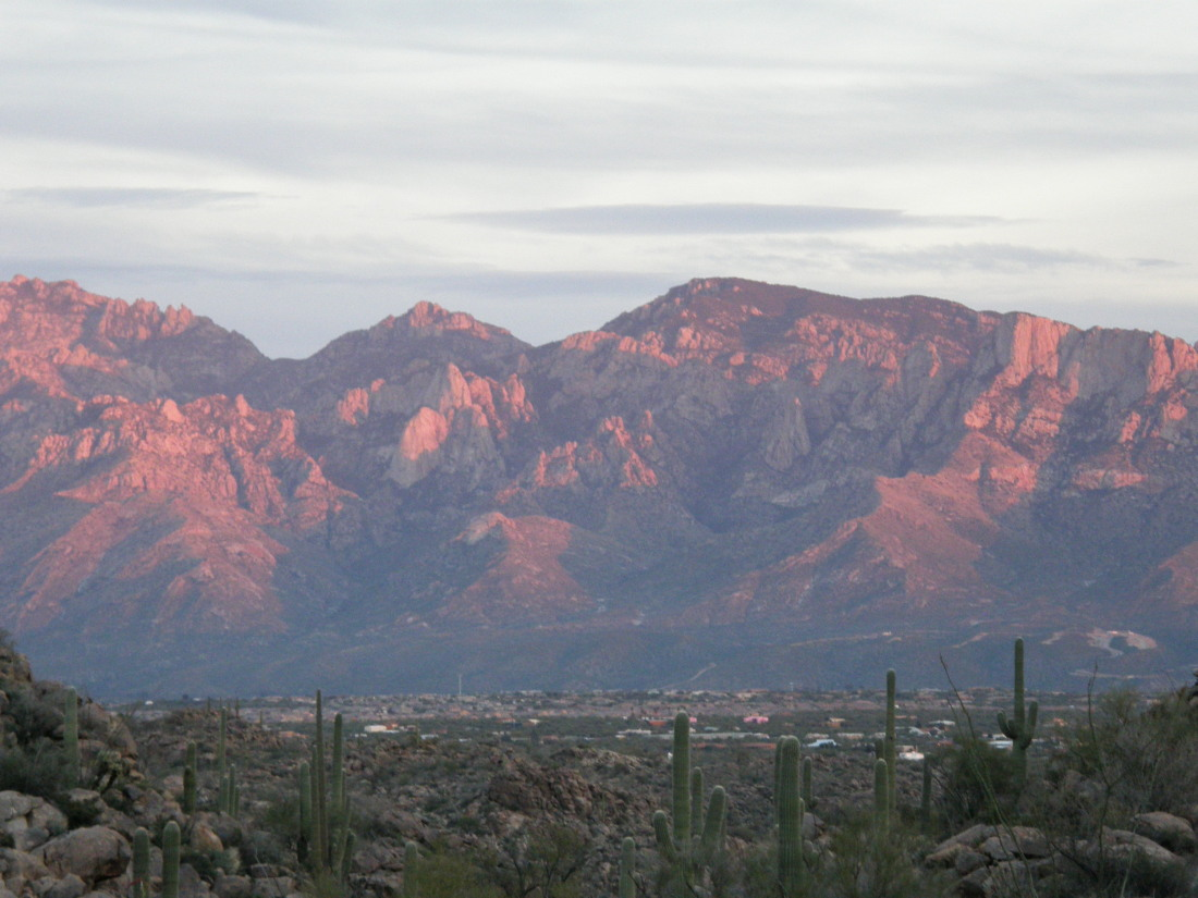Northwest Tucson Homes & Oro Valley