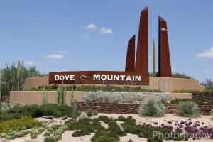 Dove Mountain Homes